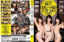 カンパニー松尾  監督25周年特別企画 輝け!日本ハメ撮り大賞 2013 part.2