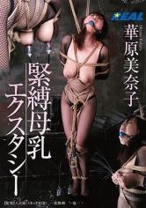 熟女(華原美奈子)出演の縛り・緊縛無料動画像。緊縛母乳エクスタシー